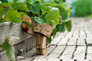 Amazons Mascot Danbo - Obrázkek zdarma pro Samsung Google Nexus S 4G