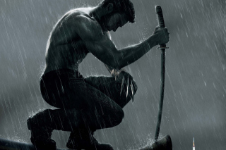 The Wolverine Movie 2013 - Obrázkek zdarma pro Widescreen Desktop PC 1920x1080 Full HD