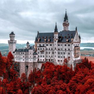 Neuschwanstein Castle in Fall - Obrázkek zdarma pro iPad Air
