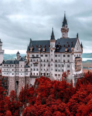 Neuschwanstein Castle in Fall - Obrázkek zdarma pro 240x432