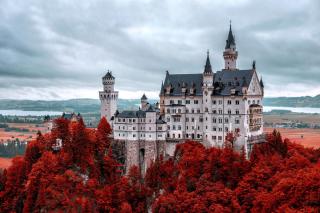 Neuschwanstein Castle in Fall - Obrázkek zdarma pro Motorola DROID