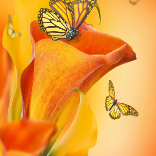 Beautiful Flower - Obrázkek zdarma pro iPad mini