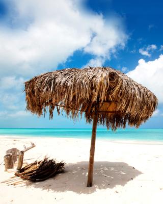 Beach Mauritius - Obrázkek zdarma pro 240x320