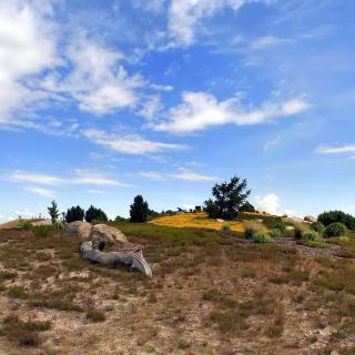 Chile Prairie Landscape - Obrázkek zdarma pro iPad Air