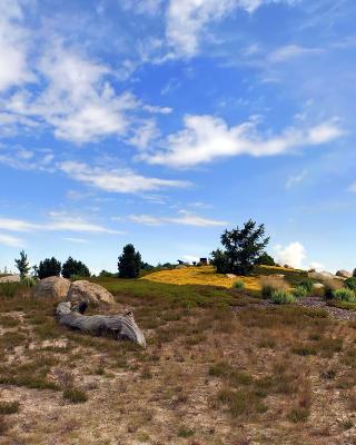 Chile Prairie Landscape - Obrázkek zdarma pro 750x1334