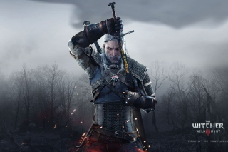 The Witcher 3 Wild Hunt - Fondos de pantalla gratis para Nokia X2-01