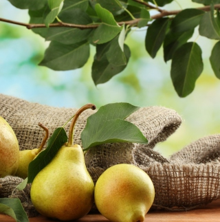 Fresh Pears With Leaves - Obrázkek zdarma pro 208x208