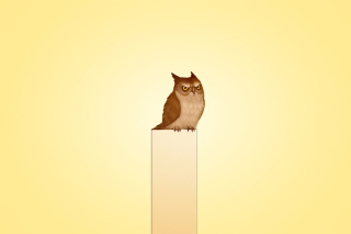 Owl Illustration - Obrázkek zdarma pro HTC Desire