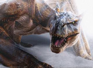 Monster Hunter 2 - Obrázkek zdarma pro HTC Desire HD