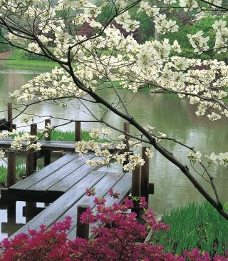 Japanese Garden And Lake - Obrázkek zdarma pro Nokia C2-02