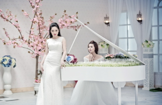 Asian Pianists - Obrázkek zdarma pro HTC Wildfire
