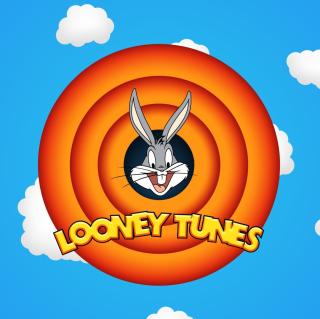 Looney Tunes - Obrázkek zdarma pro 1024x1024