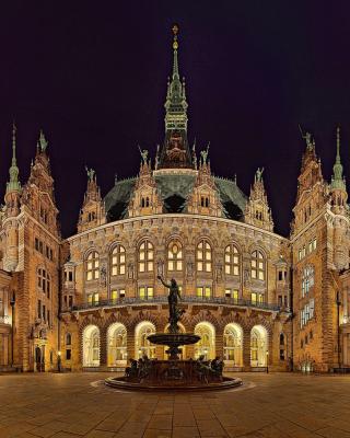 Hamburg - Obrázkek zdarma pro Nokia C3-01 Gold Edition