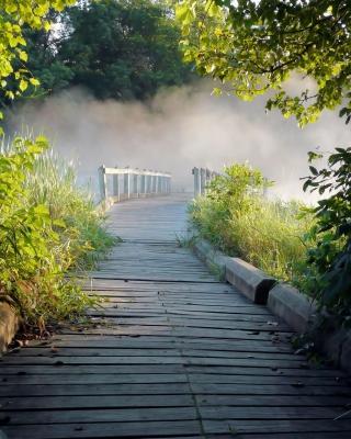 Misty path in park - Obrázkek zdarma pro iPhone 5