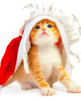 Cat Wanna Be Santa - Obrázkek zdarma pro 360x480