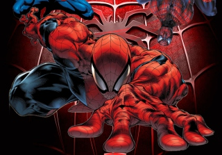 Spiderman Picture for Android, iPhone and iPad